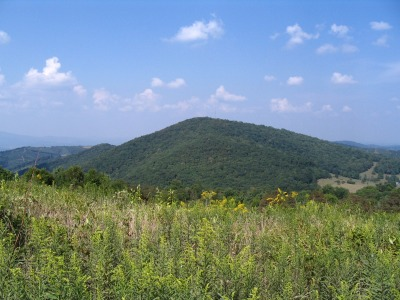 Fender Mountain