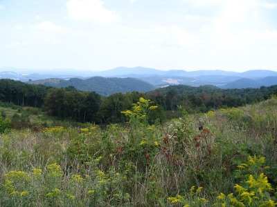 View from Cheek Mountain