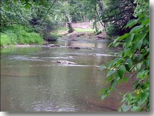 Little River in Alleghany County